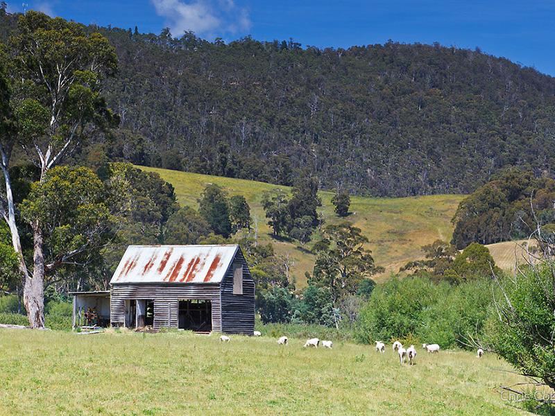 Ranelagh Tasmania
